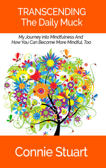 Transcending the Daily Muck: My Journey into Mindfulness and How You Can Become More Mindful too.